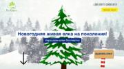 Лендинг «Новогодние живые елки»